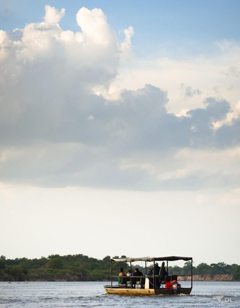 Safari en bateau à la recherche des oiseaux