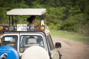 Jeep typique où il est facile et agréable de prendre des photos