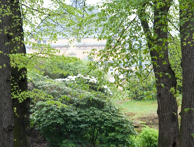 Une autre magnifique cliché des parcs de la capitale norvégienne