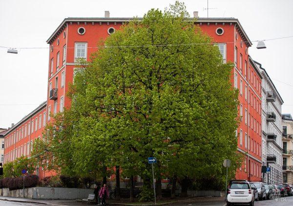 Même les buildings ont l'impression d'être resté figé dans le temps vintage à Oslo