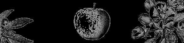 deco_pommes