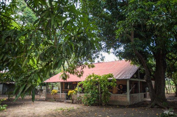 Sous les manguiers se cache notre petite demeure temporaire de l'île d'Ometepe