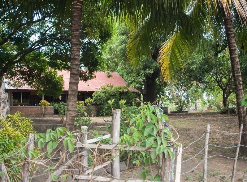Un grand jardin avec vue sur le lac Nicaragua