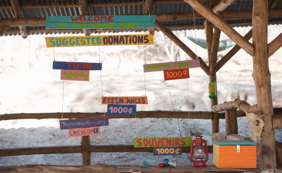 Le mur des donations pour la Monkey Farm au Cosat Rica
