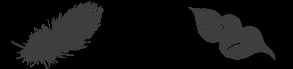 deco_activites