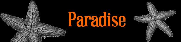 deco_paradise