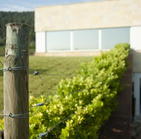 Visite privée des proprios en cette belle matinée de printemps espagnol