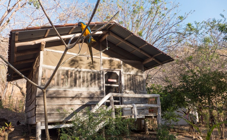 Notre maison du Costa Rica à la Monkey Farm, Guanacaste