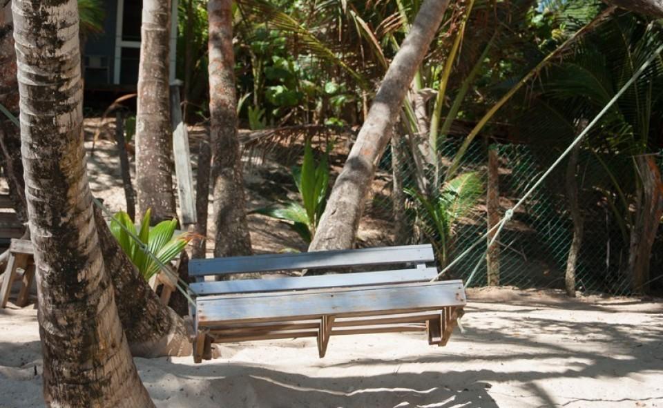 Rien de tel qu'une balançoire accrochée à un palmier