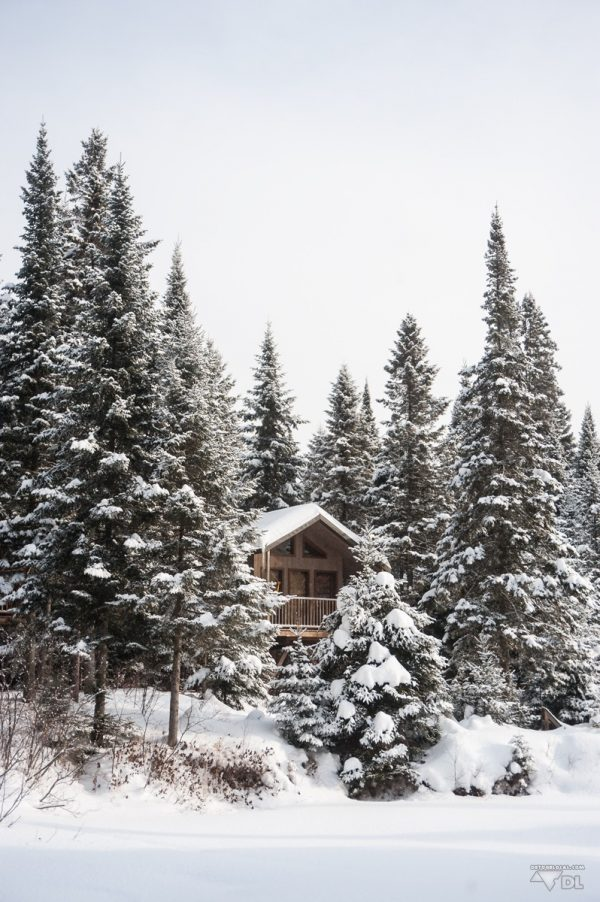 La forêt, la cabane sur pilotis, l'hiver blanc québécois, c'est ça le Canada