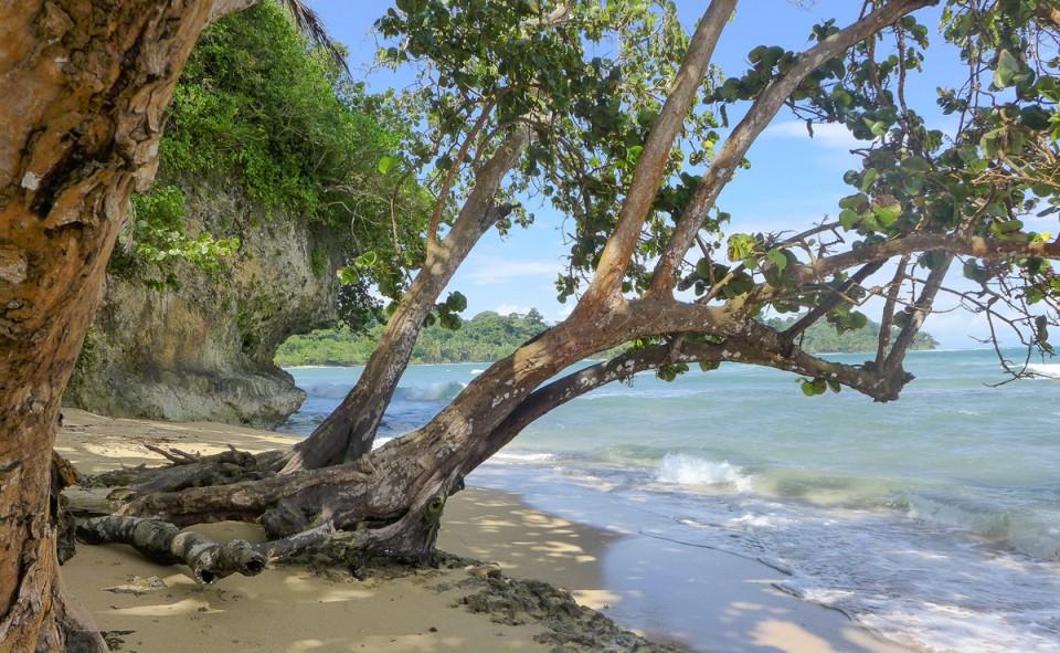 Le bout du bout de l'ile colon, Bocas del Toro