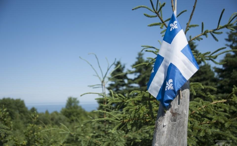 La célèbre fleur de lys du drapeau québécois.