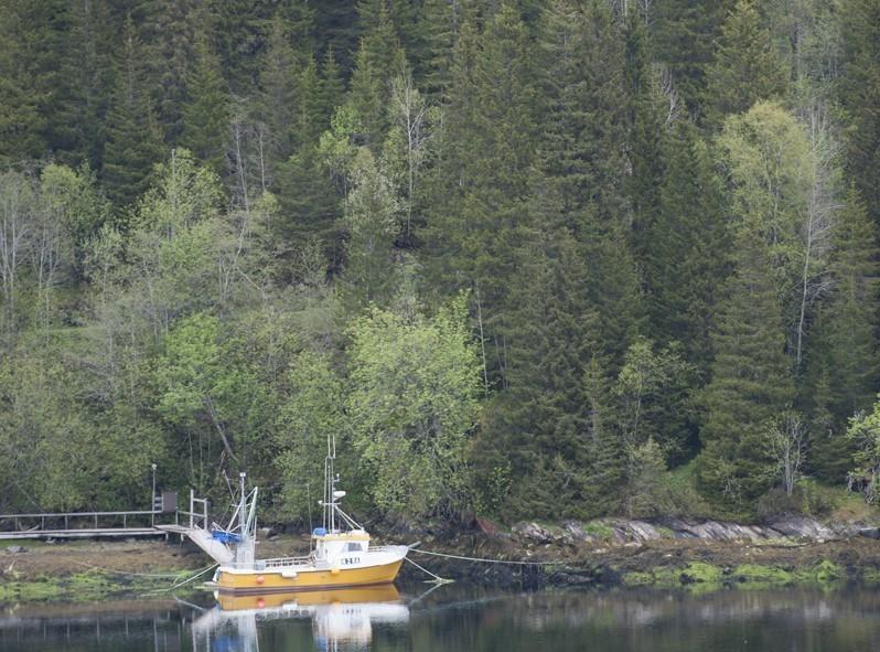 les fjord norvegiens