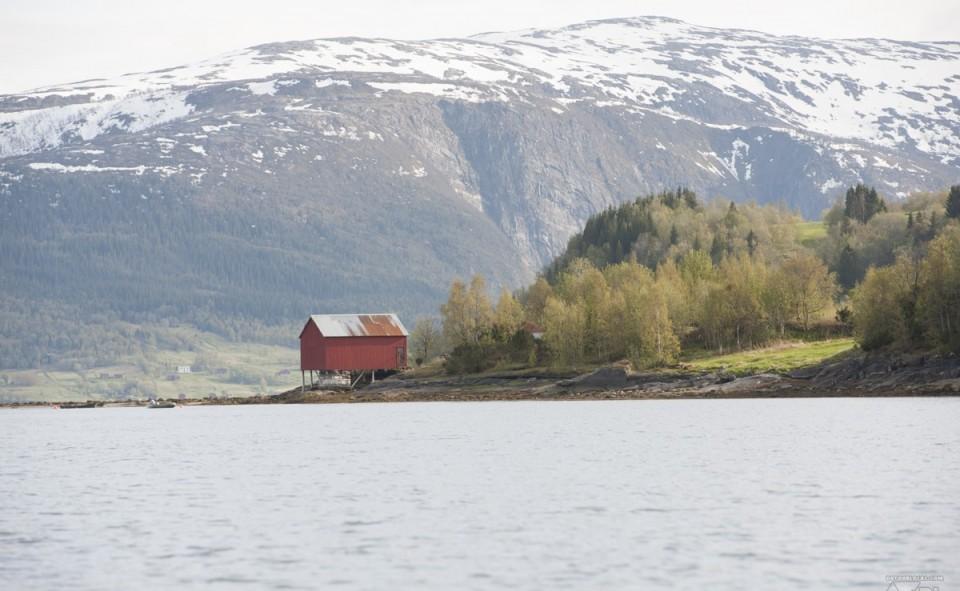 les fjords grandioses