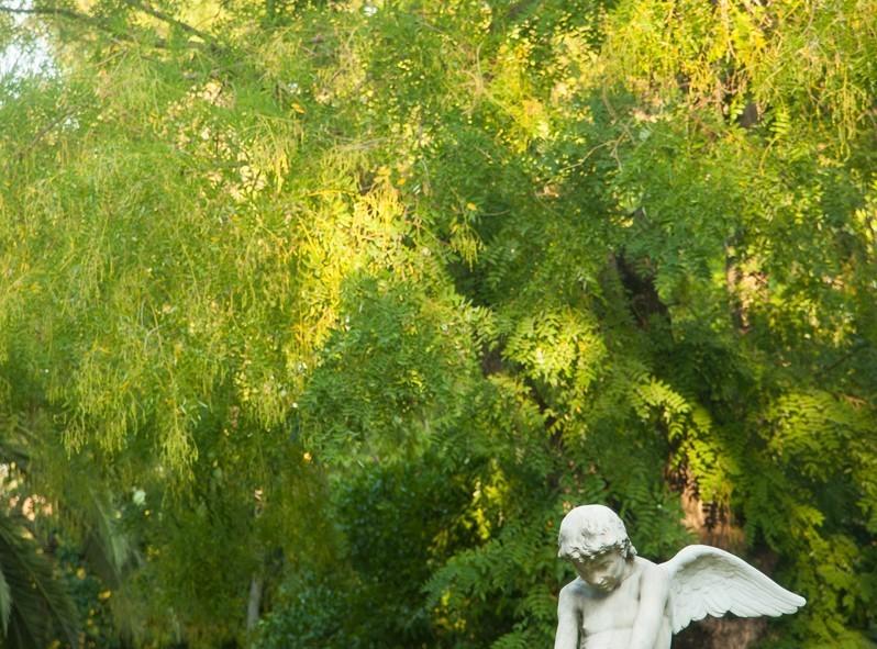Athènes n'est pas seulement polluée et bruyante, elle a de jolies petits coins verts...