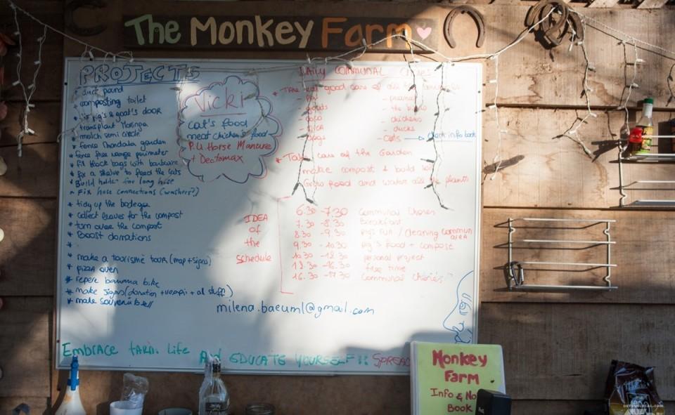 Le tableau des tâches de la Monkey farm