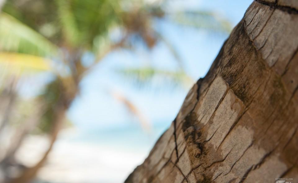 Farniente sur l'île de Maïs au Nicaragua