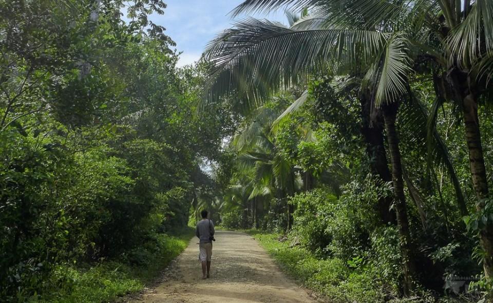 Balade découverte de l'île Colon