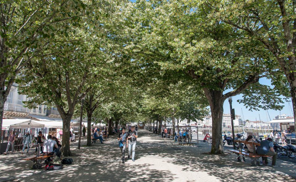 Les belles promenades à La Rochelle
